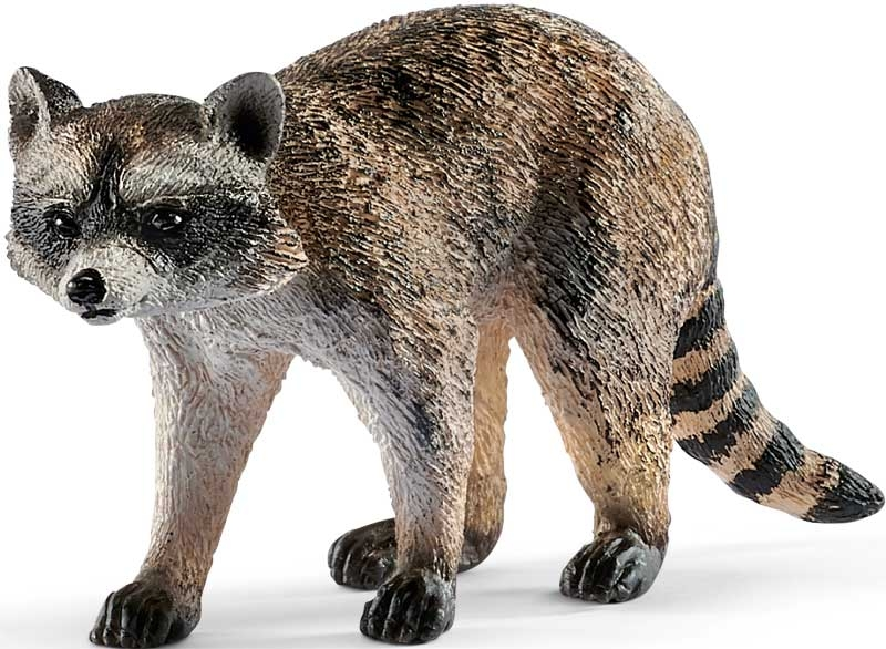 Wholesalers of Schleich Raccoon toys