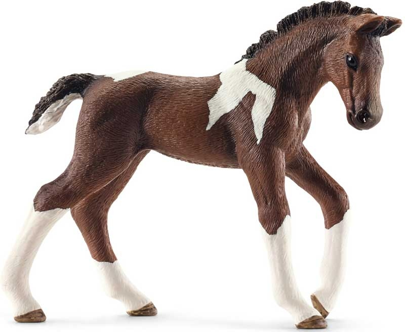Wholesalers of Schleich Trakehner Foal toys