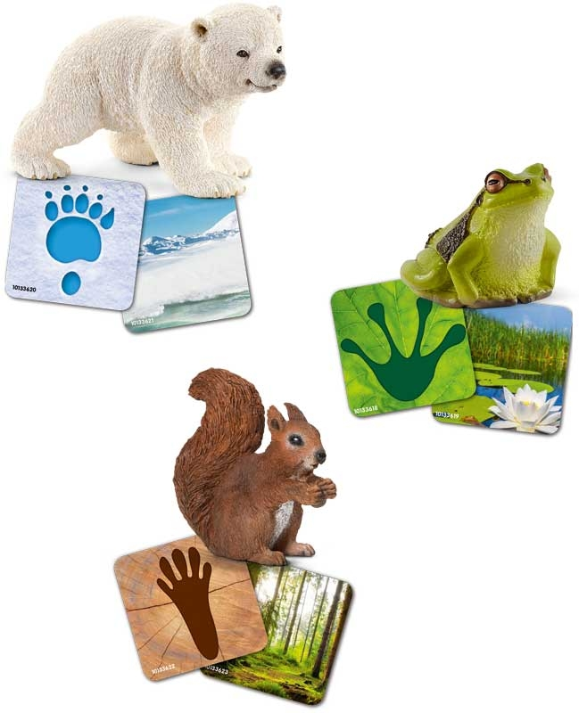 Wholesalers of Schleich Wild Life Flash Cards toys