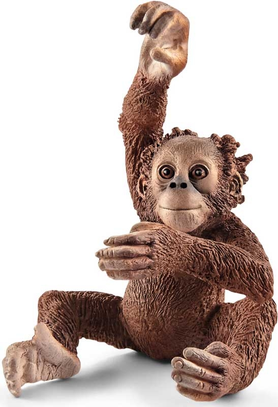 Wholesalers of Schleich Young Orangutan toys