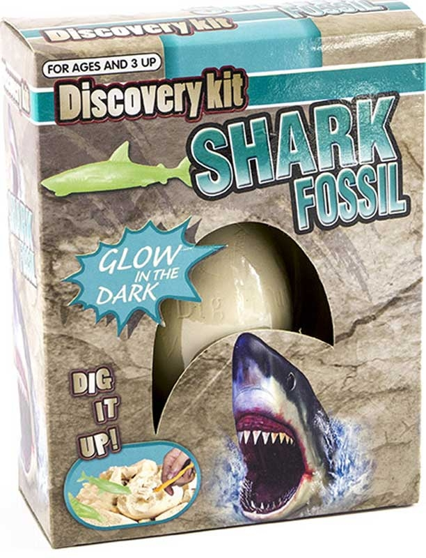 Wholesalers of Shark Fossil Egg toys