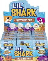 Wholesalers of Shark Hatching Egg toys Tmb