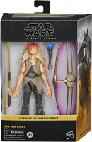 Wholesalers of Star Wars Black Series Jar Jar Binks toys image