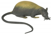 Wholesalers of Stretchy Rat toys image