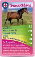 Wholesalers of Top Trumps Ponies toys image 3