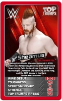 Wholesalers of Top Trumps Wwe toys image 4