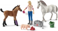 Wholesalers of Schleich Vet Visiting Mare And Foal toys image 2